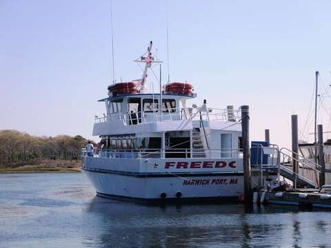 Hop aboard the Freedom Ferry at Saquatucket Harbor and explore Nantucket! - Harwich Port Cape Cod New England Vacation Rentals