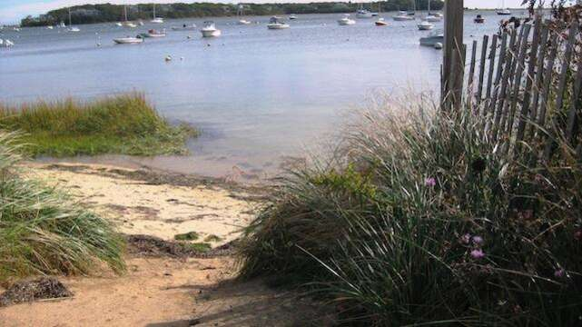 Town Landing at the end of Battlefield- Take a stroll with your morning coffee and breathe in the fresh salt air.. - Chatham Cape Cod New England Vacation Rentals