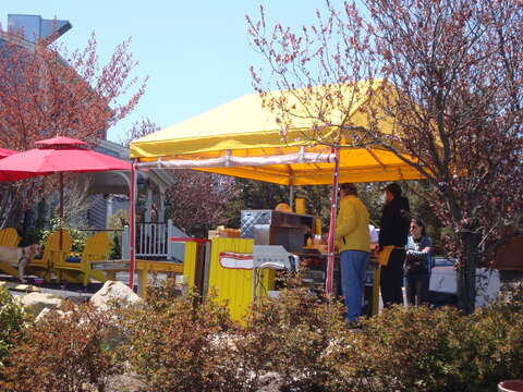 Enjoy a great hot dog at Depot Dogs just before you bike or beach - South Harwich Cape Cod New England Vacation Rentals