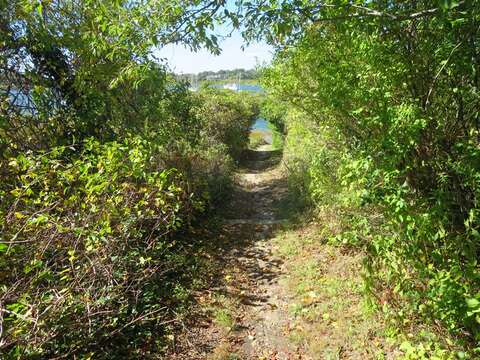 Path to Mill Pond (public) located just 2 blocks away - Chatham Cape Cod New England Vacation Rentals