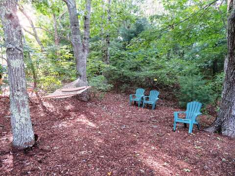 Relax in the hammock under the shady pines - 12 Alonzo Road South Harwich Cape Cod New England Vacation Rentals