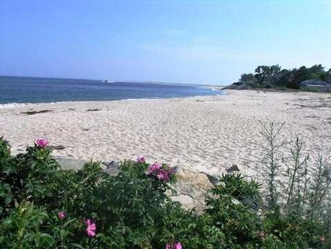 Andrew Hardings Beach across street - Chatham Cape Cod New England Vacation Rentals