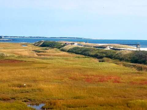 View from the back deck! 17 Uncle Venies South Harwich Cape Cod New England Vacation Rentals