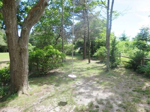 Tree swing for the young and young at heart! - 28 Sears Point Road Chatham Cape Cod New England Vacation Rentals