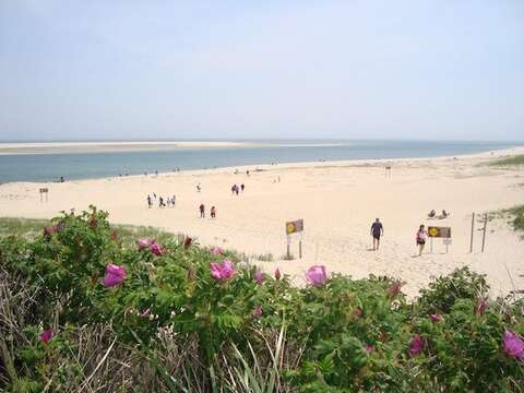 Lighthouse Beach is just 0.5 mile away - Chatham Cape Cod New England Vacation Rentals
