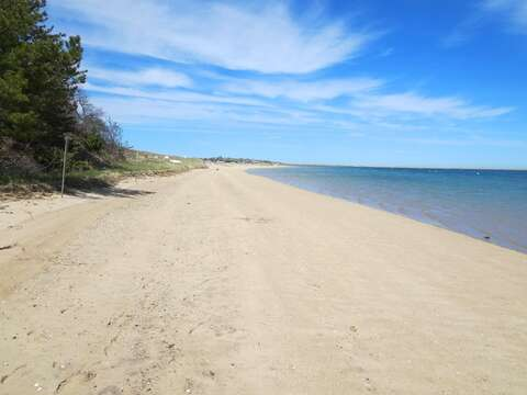 Sandy and beautiful beach out at Monomoy Wildlife Refuge, 1 mile from the home. Leashed dogs are welcome! - Chatham Cape Cod New England Vacation Rentals