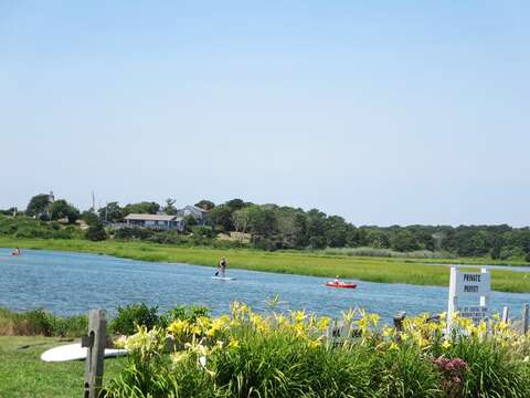 Stand up paddle board or kayak down Bucks Creek just steps from the house.  - Chatham Cape Cod New England Vacation Rentals