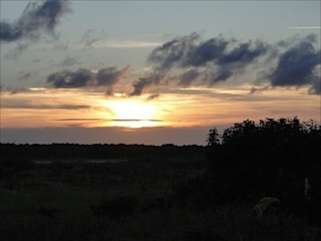 At the end of the day, head to the deck and watch the sunset over the Edisto River.