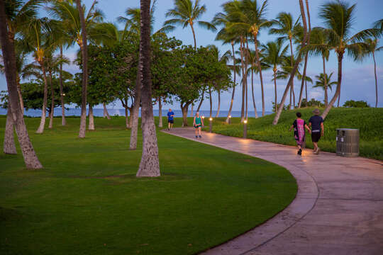 People walking to the lagoon via lit sidewalks.