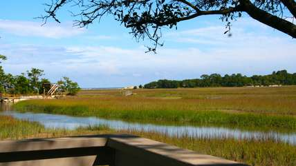 You will see shore birds, dolphins, and the ocean in the distance.