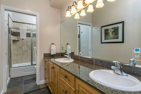 Lower Bath with Double Sink Vanity Tub/Shower Combo
