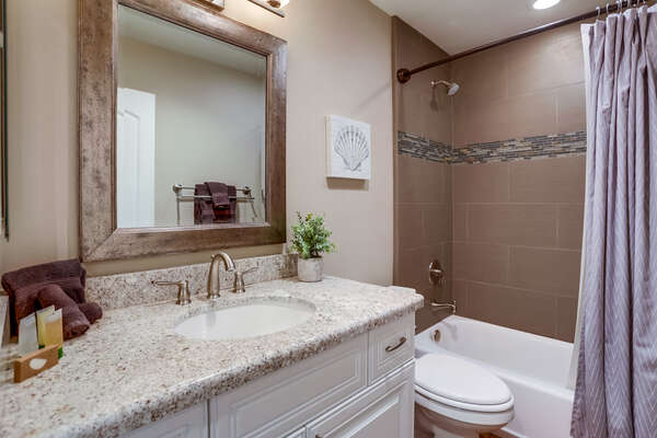 Single Sink Vanity, Toilet, and Shower-Tub Combo.