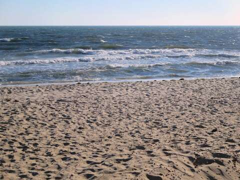 Belmont Beach in Harwich is just a mile away! - West Harwich Cape Cod New England Vacation Rentals