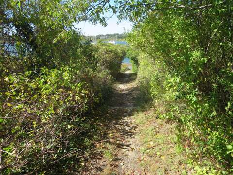 Just up the road you can find a public path to Mill Pond! Chatham Cape Cod New England Vacation Rentals