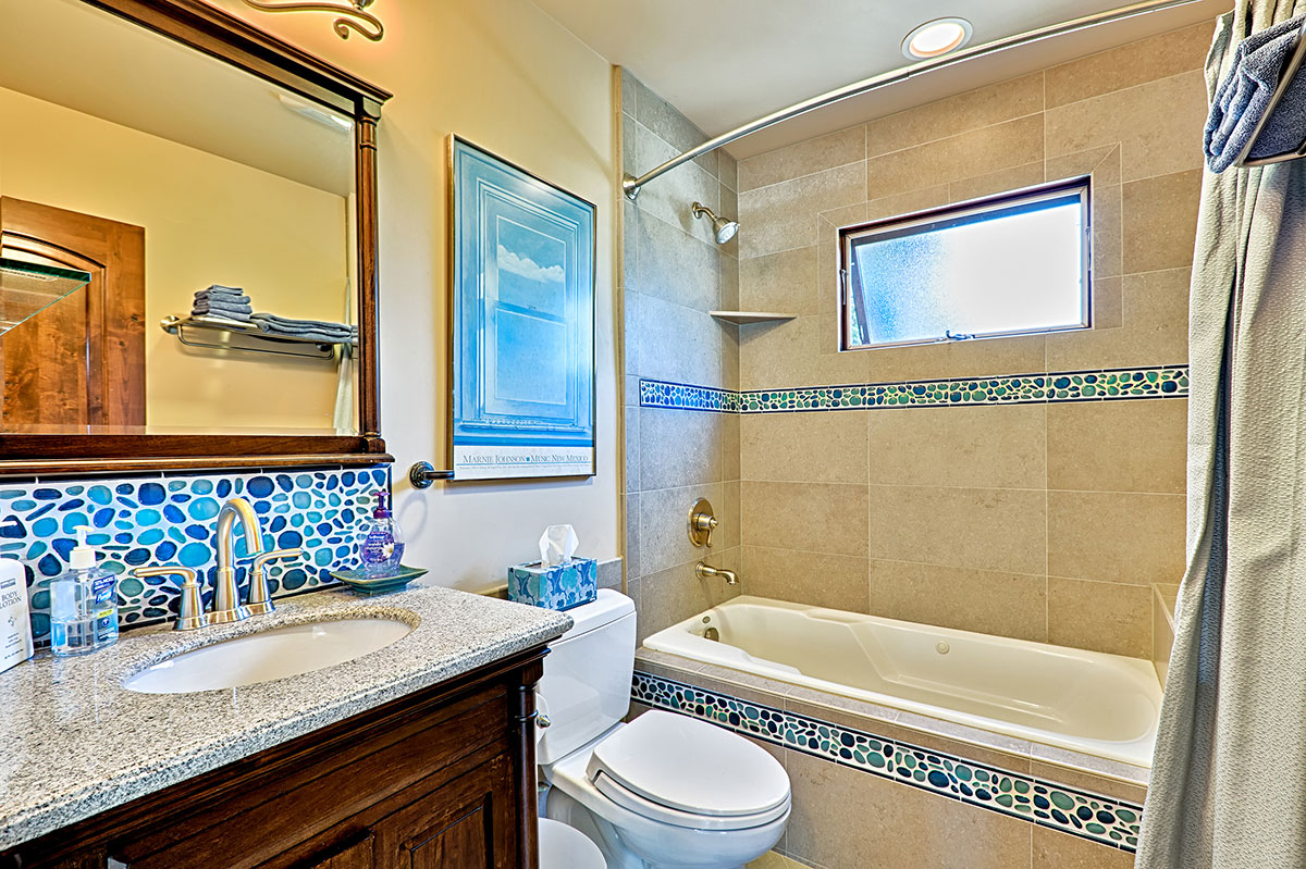 The Suite's private bathroom with jetted tub / shower combo.