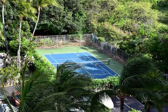 Aerial View of the Tennis Court Surrounded by Palm Trees.