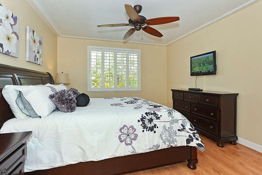 Master Bedroom and TV