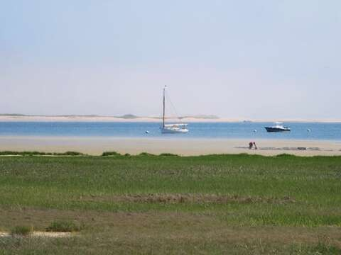 Get your clamming permit and dig up dinner right on the flats! - Chatham Cape Cod New England Vacation Rentals
