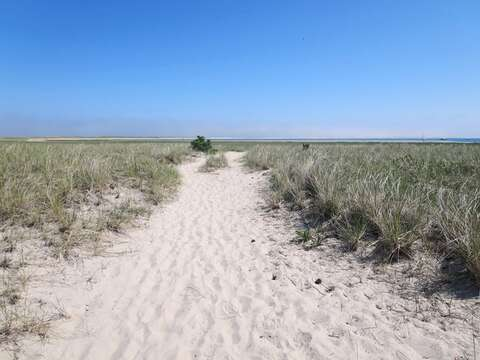 Walk out your front door and follow this Path To Peace.. walk for miles on little beach. - 53 Little Beach Road Chatham Cape Cod New England Vacation Rentals