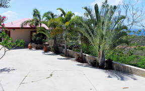 Private palm lined driveway with plenty of parking