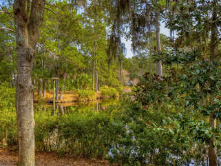 Fantastic low country scenery