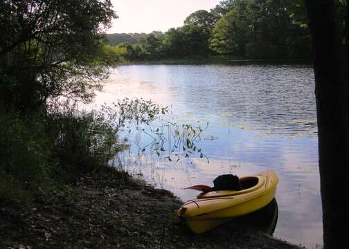 deeded access to Blue Pond in back yard- kayak (2 included with rental! )or sup board till your heart is content.- Chatham Cape Cod New England Vacation Rentals