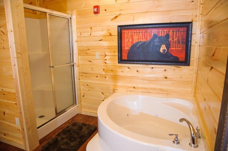Bathtub Next to the Shower.