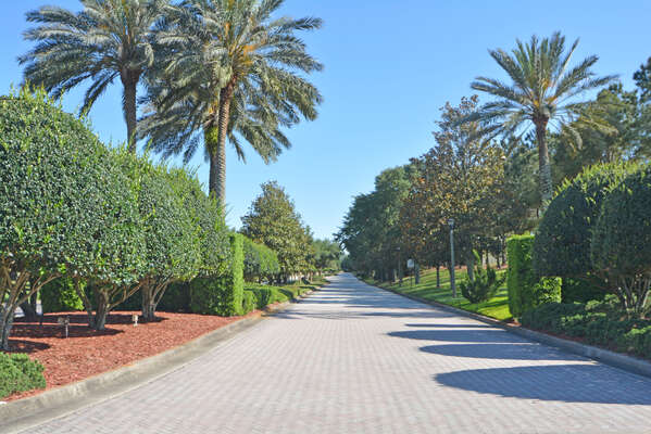 Beautiful tree lined avenue leading to development