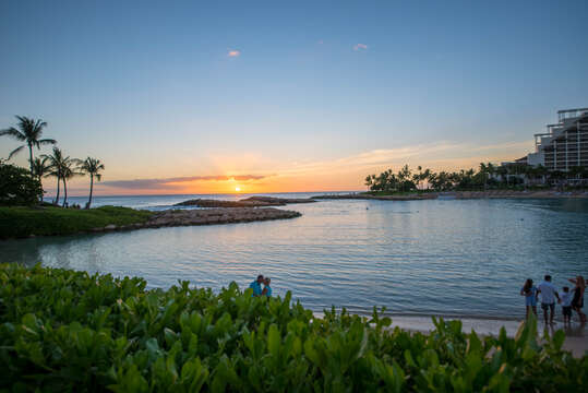 Beautiful Landscape Outside of Our Ko Olina Resort Vacation Rental.