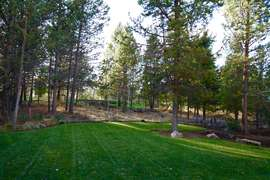 Grassy Lawn - perfect for relaxing. Golf Course Beyond Trees.