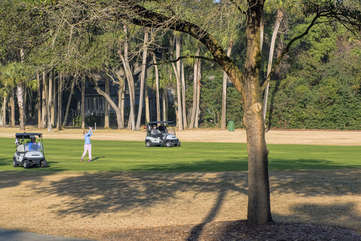 Catch the golfers on the 17th fairway!