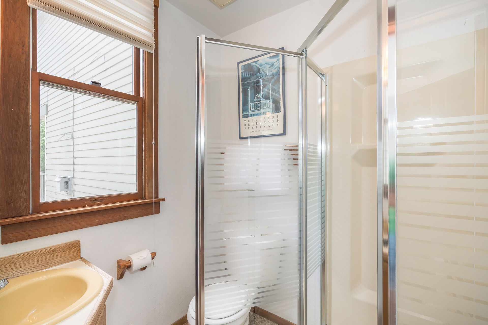 A walk-in shower, a toilet and a sink