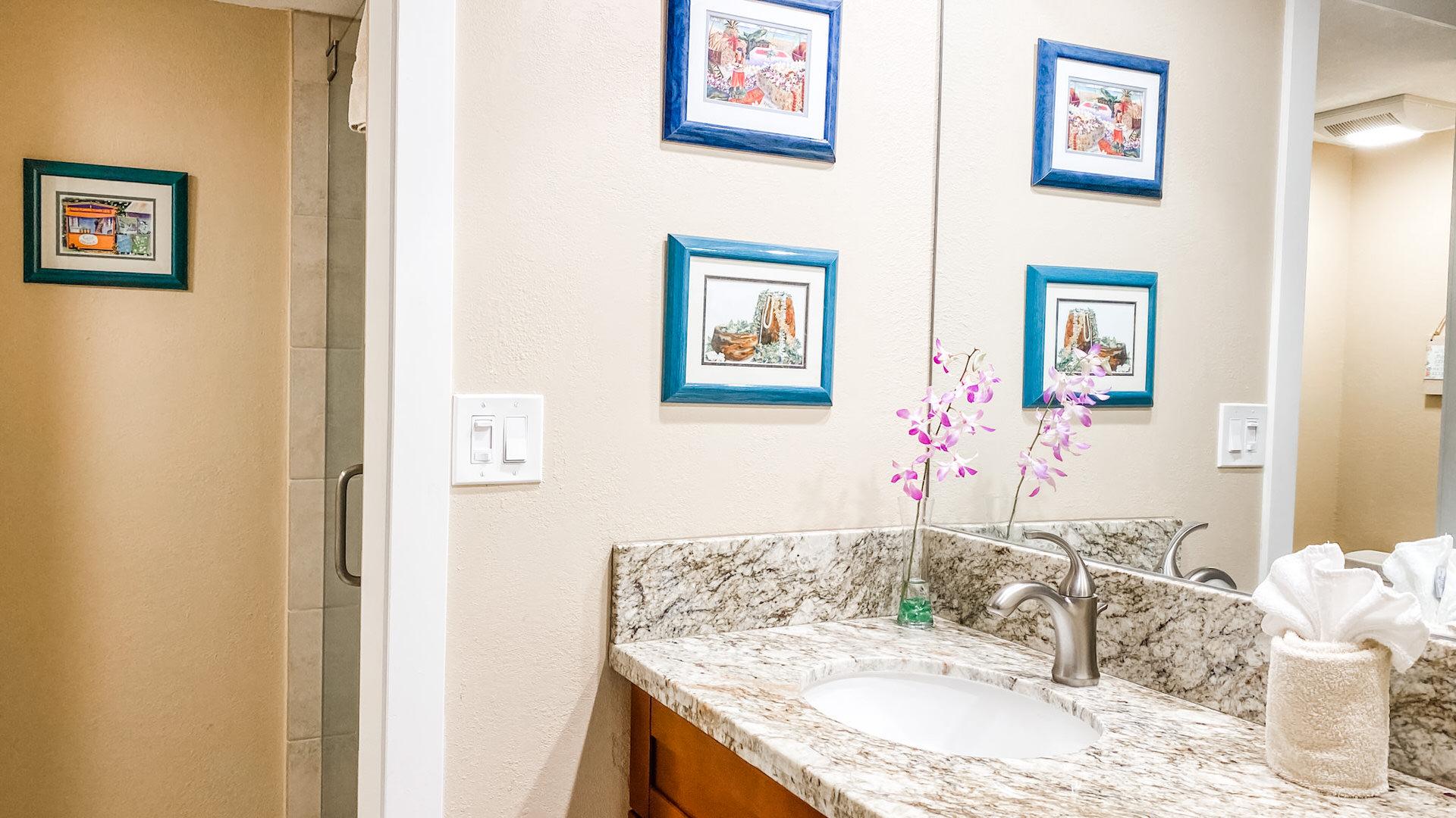 D204 Guest Bathroom Vanity