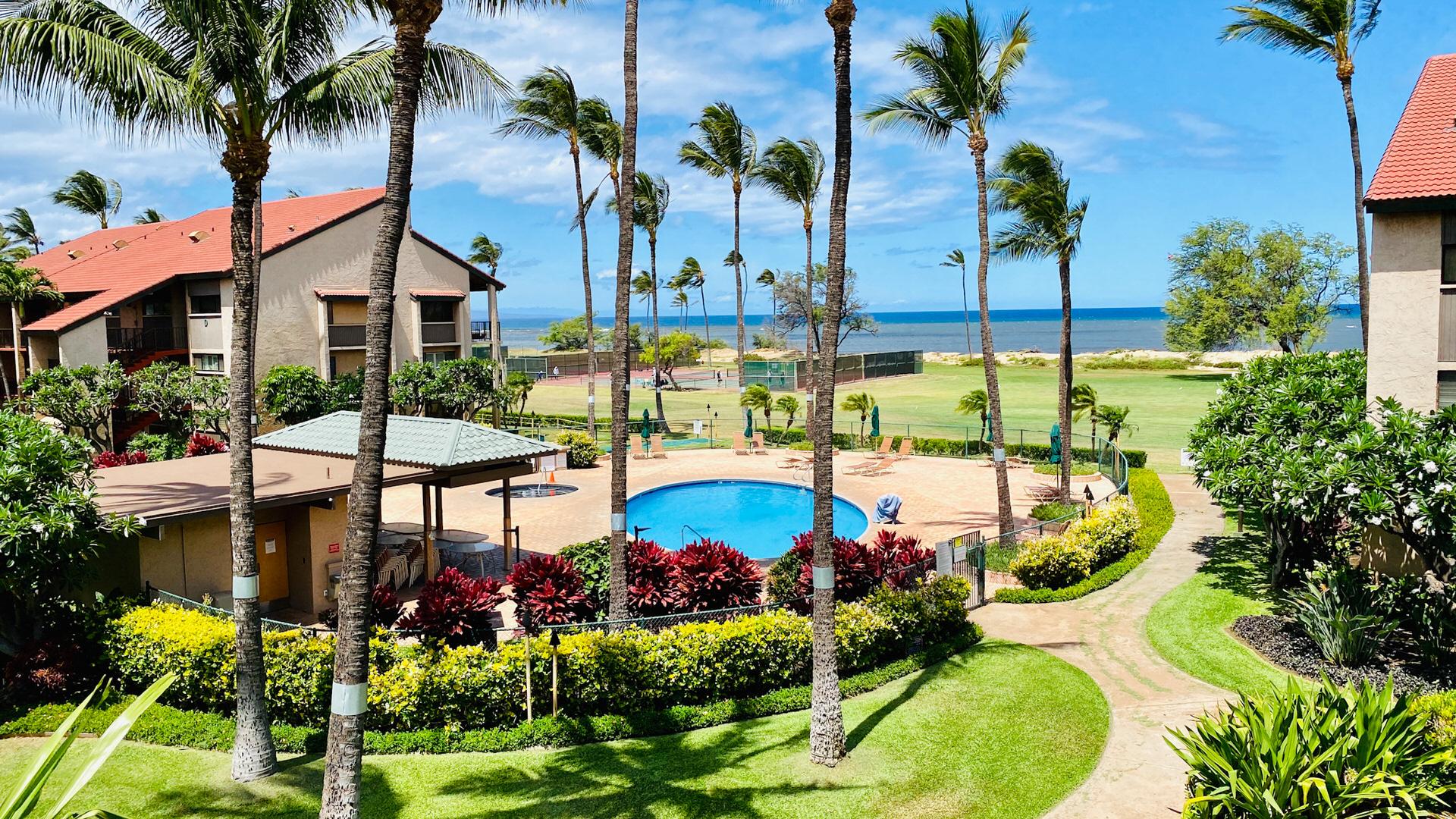 B311 Pool and Ocean View