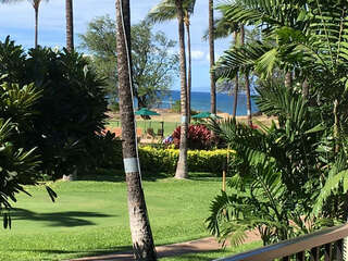 B202 Lanai View of Pool and Ocean