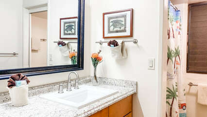 A107 Bathroom, Vanity and Shower