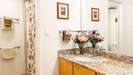 A203 Guest Bathroom Vanity
