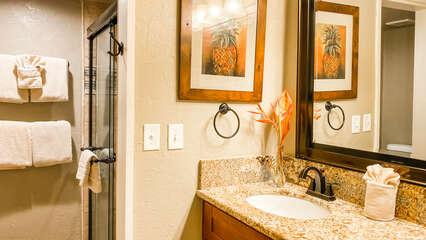 C305 Guest Bathroom Vanity and Shower