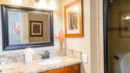 C305 Master Bathroom Vanity