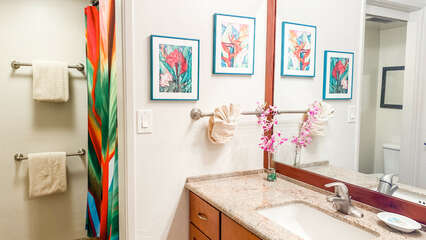 D307 Guest Bathroom Vanity