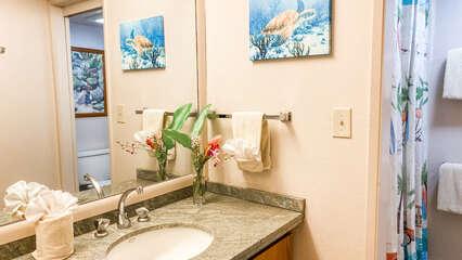 B105 Bathroom Vanity