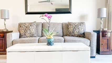 D105 Sofa and Coffee Table