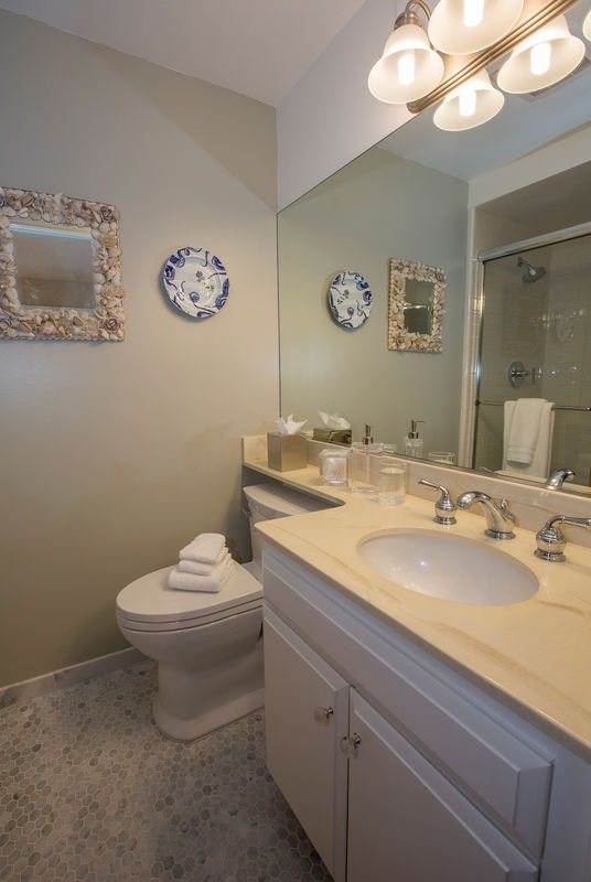 Master Bathroom has been newly remodeled