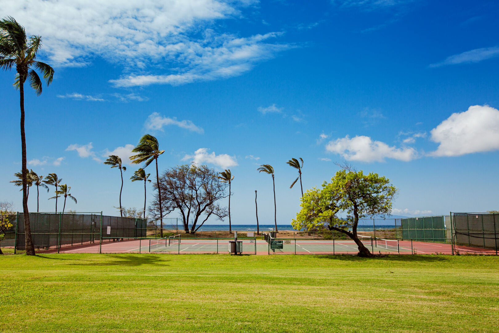 D207 Tennis Courts
