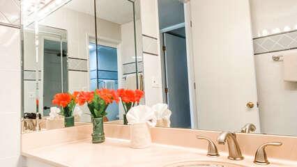 C202 Bathroom Vanity