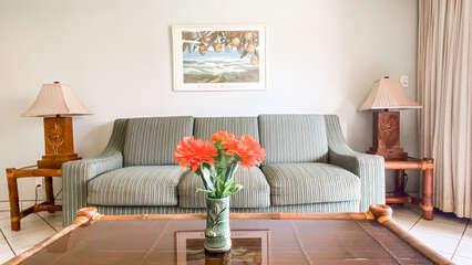 C202 Sofa and Coffee Table