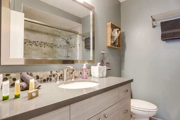 Single Sink Vanity, Mirror, and Toilet.
