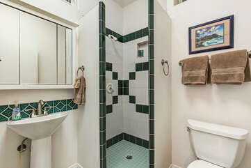 Walk-In Shower/toilet  for Den