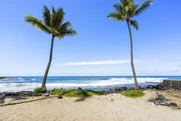Palms and the sandy beach with ocean waves