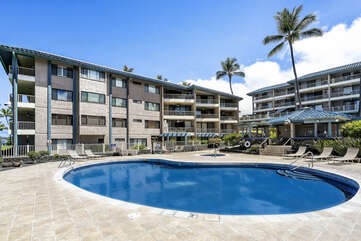 Rentals and the swimming pool